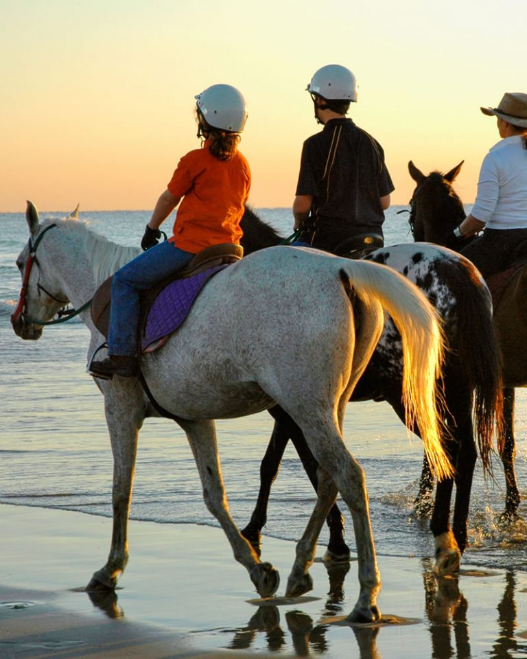 Ausflüge zu Pferd Hotel Pedra Niedda